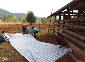Phòng chống dịch bệnh cho vật nuôi trong mùa mưa bão