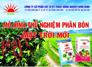 Mô Hình Trình Diễn Phân Bón Mặt Trời Mới cho Cây Cà Phê tại ĐắkLắk