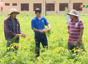 Doanh nghiêp góp phần giúp sản xuất nông nghiệp ứng phó với nắng hạn