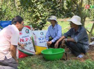 Chuyển giao tiến bộ KHKT chăm sóc cây ăn quả cho nông dân tại Hoài Ân – Bình Định